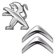 Инструмент Peugeot & Citroen (1)